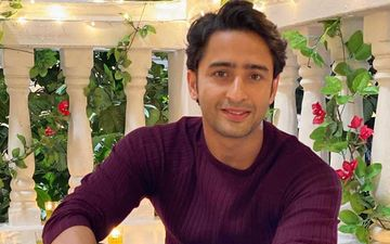 Coronavirus Lockdown: Yeh Rishtey Hai Pyaar Ke's Shaheer Shaikh Shares An Informative Video For People Stepping Out Of The House