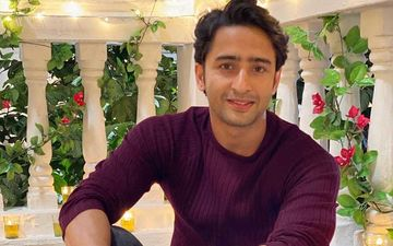 Shaheer Sheikh On Non-Payment Of Dues Of Workers, 'It's A Difficult Time And I Am Supporting People Who Were Financially Dependent On Me'