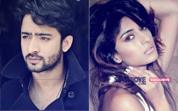 Shaheer Sheikh Targets Journalist For Leaking His Hot Scene With 'Girlfriend' Erica Fernandes