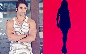 Hunk Shaheer Sheikh Will ROMANCE This TV Hottie In His Next Show