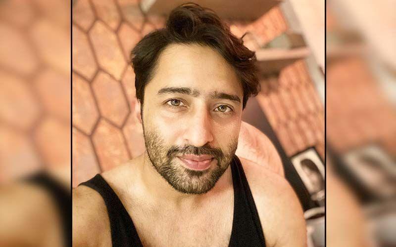 Shaheer Sheikh Juggles Between Kuch Rang Pyaar Ke Aise Bhi 3 and Pavitra Rishta 2, Keeps The Internet Busy