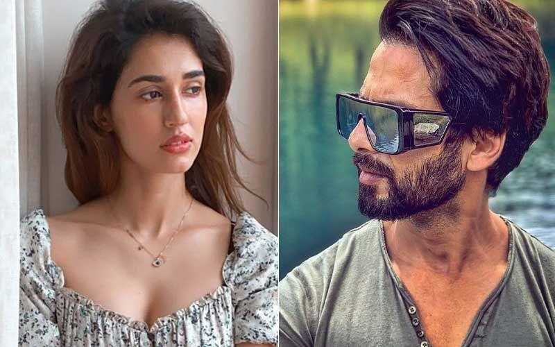 Shahid Kapoor-Disha Patani To Star In Shashank Khaitan's Yoddha? Duo To Romance Each Other For The First Time