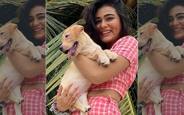 Ranveer Singh's Jayeshbhai Jordaar Co-Star Shalini Pandey Brings Home A Puppy; Actress Gushes Over Her New Companion: 'It's The Most Beautiful Feeling