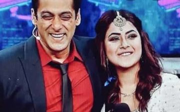 Bigg Boss 13: Fans Think Salman Khan Has Soft Spot For Shehnaaz Gill Post 'I Support Punjab Ki Katrina' Remark