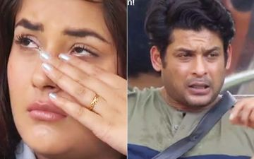 Bigg Boss 13: Sidharth Shukla Rages At Shehnaaz Gill, 'Jo Apne Maa Baap Ka Saga Nahi, Wo Kisi Ka Nahi,' Leaves Sana Crying Like A Baby