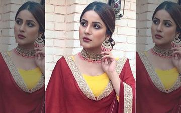 Bigg Boss 13: Shehnaaz Gill To Find A Groom For Herself In A Swayamvar - Is This For Real?