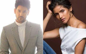 Beyhadh 2's Shivin Narang Bags A Music Video Opposite Miss Universe 2019 Vartik Singh Post Show's Abrupt End