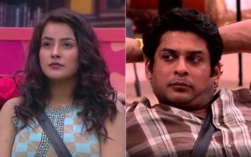 Bigg Boss 13: Shehnaaz Gill Changes Game Plan; Sidharth Shukla Asks Who's The 'Flipper' Now?