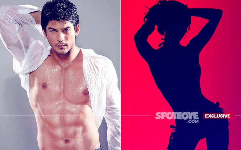 After TANTRUM KING Sidharth Shukla's Exit, A SEX WORKER'S Character Introduced In Dil Se Dil Tak