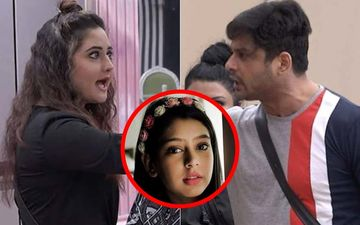 Bigg Boss 13: Niti Taylor Lashes  Out At Sidharth Shukla For 'Aisi Ladki' Comment On Rashami Desai, Slams Makers