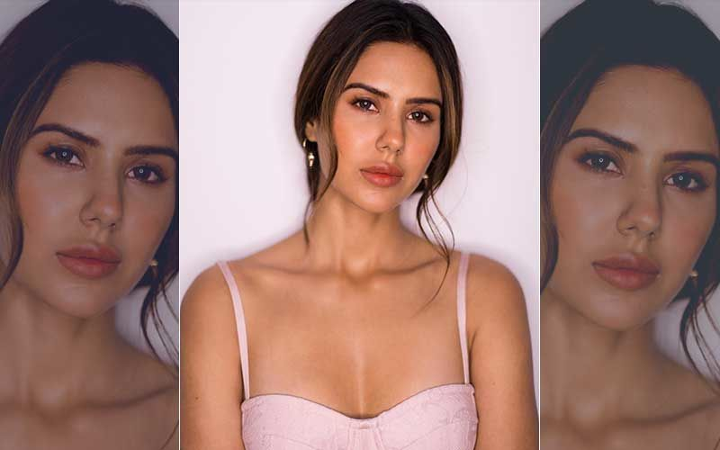 Punjabi Diva Sonam Bajwa Looks Resplendent In Her Latest Picture