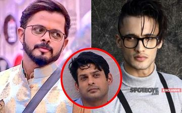 'Asim Riaz Should Have Won And Not Sidharth Shukla,' Sreesanth On His Gym Buddy Losing Bigg Boss 13- EXCLUSIVE