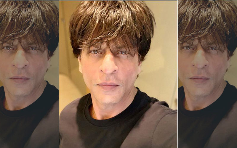 Shah Rukh Khan's Voice Was Similar To Son Aryan Khan, Hence Had To Dub Twice For The Lion King