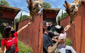 Sunny Leone, Daniel Weber And Their Kids Feed A Giraffe; Lady Feels 'Blessed' To Be Supporting Wildlife Learning Center