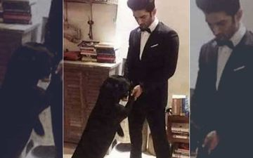 Sushant Singh Rajput Dancing With Pet Fudge On Govinda And Karisma Kapoor's Sona Kitna Sona Hai Is Pawwdorable