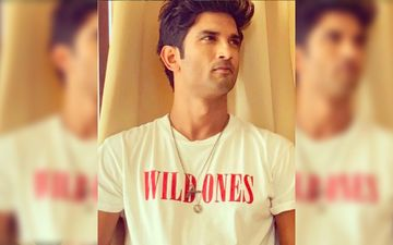 Sushant Singh Rajput Death: CBI To Re-Register FIR Filed Against Rhea Chakraborty By Late Actor's Father In Patna - Reports