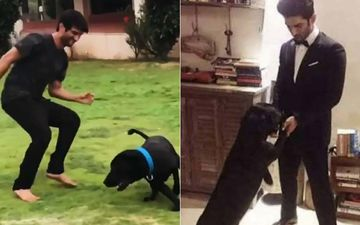 Rumours Of Sushant Singh Rajput's Pet Dog Fudge Passing Away In Grief After SSR's Death Are UNTRUE