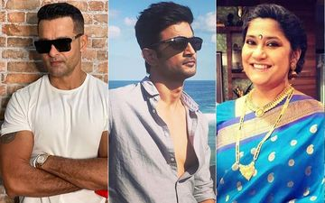 Sushant Singh Rajput Death: Rohit Roy Says He's Certain There's More To SSR's Death, Renuka Shahane Wants Mudslinging To Stop