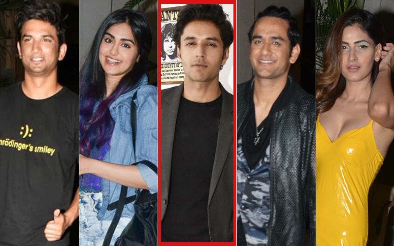 Sushant Singh Rajput, Karishma Sharma, Vikas Gupta, Adah Sharma Let Their Hair Down At Siddharth Gupta's Birthday Bash