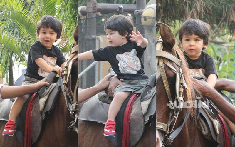 घोड़े की सवारी करते नजर आये छोटे नवाब तैमूर अली खान