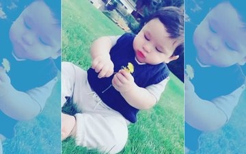 Taimur Ali Khan Looks Cute As A Button In His Latest Picture
