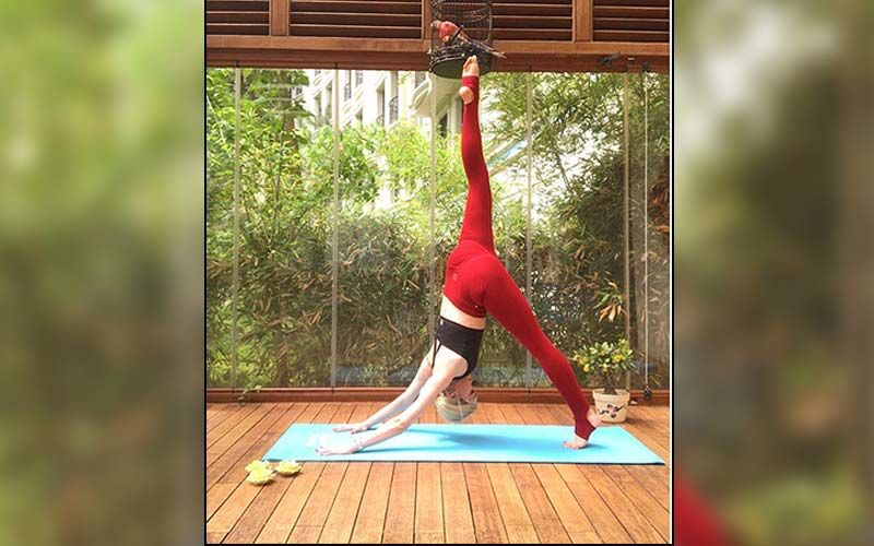 Virtual Yoga Day Celebration This Year Due To Coronavirus