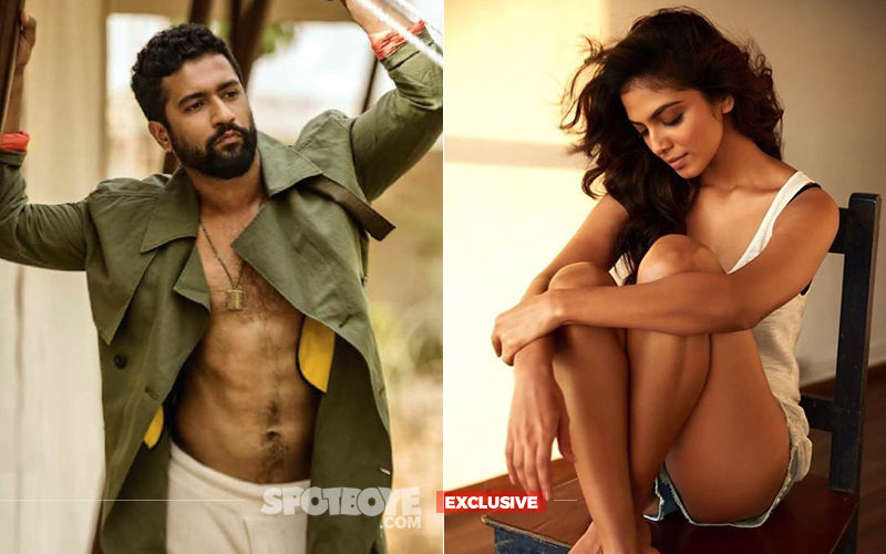 The Last Word: Vicky Kaushal NOT Dating Malavika Mohanan
