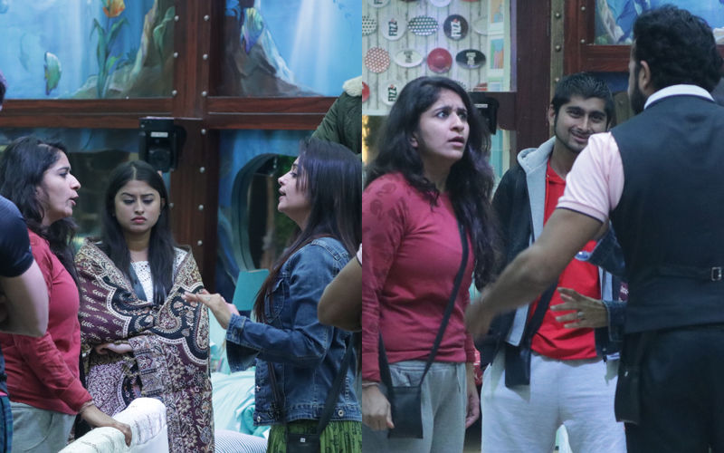 Bigg Boss 12, Day 87 Written Updates: Dipika Kakar-Surbhi Rana And Sreesanth-Romil Chaudhary Can't Stop Fighting
