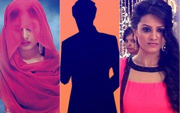 This Famous TV Actor MOCKED Ekta Kapoor's Naagin & Anita Hassanandani...