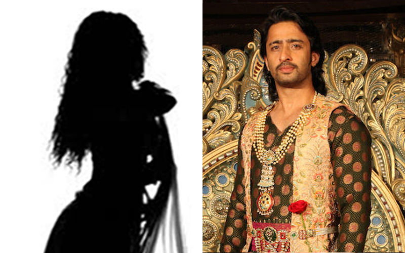 This Naagin 3 Actress Will Play Shaheer Sheikh's Wife In Daastan-E-Mohabbat Salim Anarkali