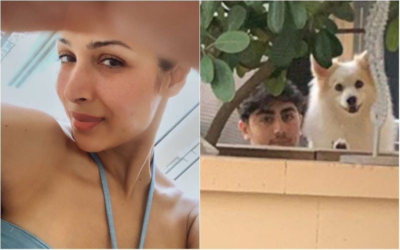 COVID-19 Positive Malaika Arora's Son Checks On Mom From Across The Balcony Wall; Malla Says: 'My Heart Breaks To Not Be Able To Hug My Babies'