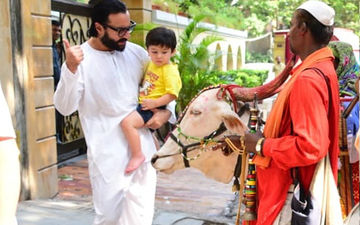 Taimur And Saif Ali Khan's Holy Encounter With A Cow!
