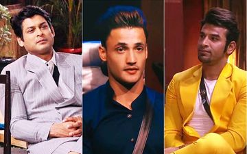 Bigg Boss 13: Asim's Brother Slams Vindu Dara Singh; Umar Bashes Paras-Sidharth For Shefali-Asim's Friendship