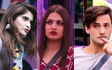 Bigg Boss 13: Himanshi Khurana Slams Arti Singh For Her Comment On Asim Riaz's Over-Protectiveness Towards Her