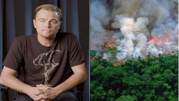 Leonardo Di Caprio Reacts To Brazil President Accusing Him Of Funding The Amazon Rainforest Fires