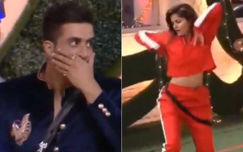 Bigg Boss 14: Aly Goni Has The Best Reaction To Rubina Dilaik's Mega Energetic Dance Performance; Wild Card Entrant Touches The Lady's Feet-WATCH
