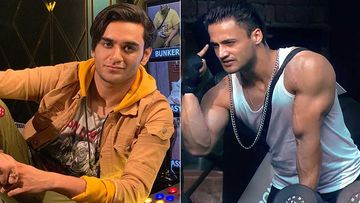 Bigg Boss 13: Did Vikas Gupta Just Expose Asim Riaz's Lie With This Video?
