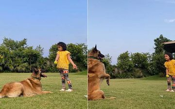 MS Dhoni's Little Princess Ziva Dhoni Is A Master In Dog Training; Teaches Her Obedient Pet Basic Commands Like A Pro- WATCH