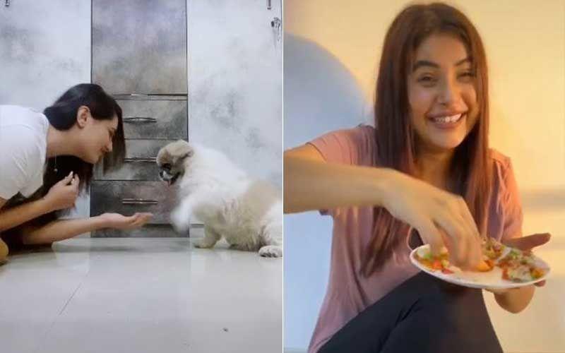 Bigg Boss 13's Rashami Desai And Shehnaaz Gill Entertain Amid Lockdown With Their TikTok Videos; Rashami Goes For Cute, Sana's Is Cheeky AF