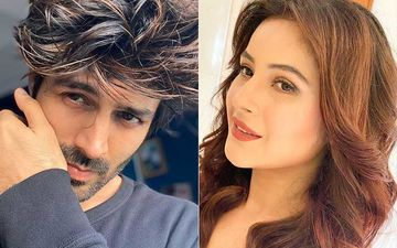 Kartik Aaryan REPLIES To Bigg Boss 13 Fame Shehnaaz Gill's Post; The Actor's Puzzled Question Has Left Fans In A Frenzy