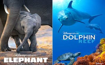 World Environment Day 2020: Meghan Markle's Elephant, Dolphin Reef And Other Documentaries You Can JUST BINGE On Disney+ Hotstar