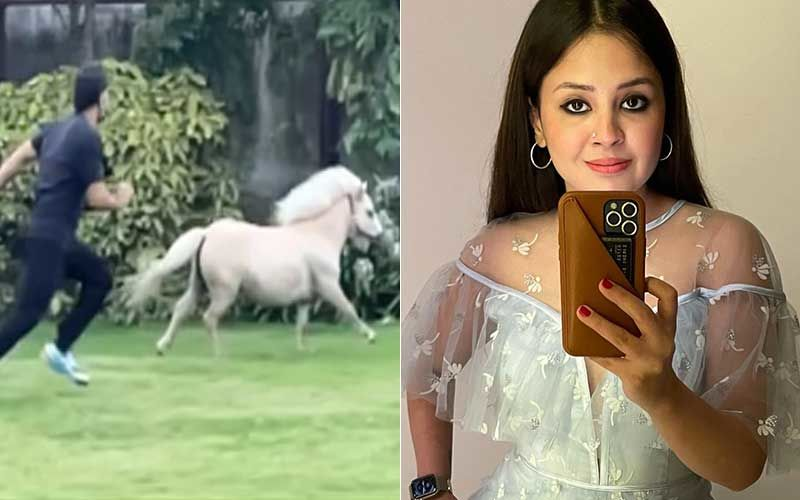 MS Dhoni's Video Racing Against A Beautiful White Pony Is Adorable; His Wife Sakshi Dhoni Treats Fans With A Glimpse-WATCH