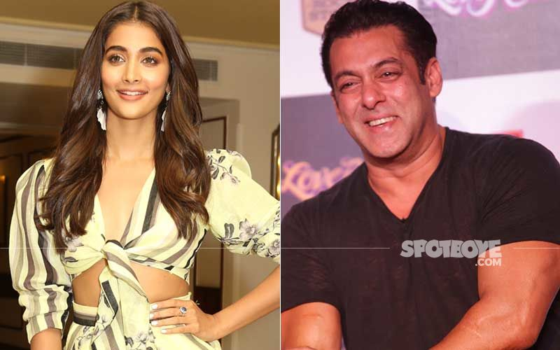 Pooja Hegde On What She Admires Most About Her Film Bhaijaan Co-Star Salman Khan; Actress Says He Is Very Transparent About Who He Likes And Dislikes