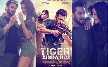 Movie Review: Tiger Zinda Hai, Aur Tigress Bhi; Ex-Lovers Salman & Katrina Back In Full Flow