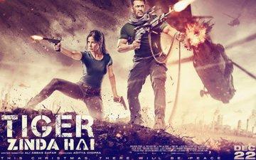Salman Khan & Katrina Kaif Look Feisty In the First Poster Of Tiger Zinda Hai