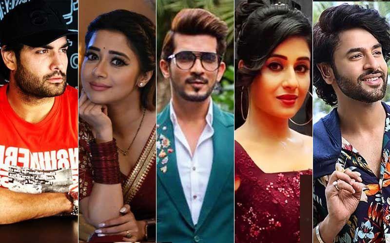 Arjun Bijlani, Paridhi Sharma, Vivian Dsena, Shashank Vyas, Tinaa Dattaa Raise Their Voice Against Lack Of Weekly Offs In The TV Industry