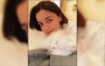 Alia Bhatt's Quarantine Snapshots Are The Perfect Way To Spend Time With Your Family
