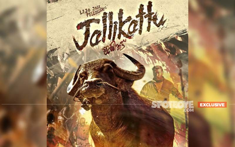 Jallikattu For Oscars 2021: Bollywood Didn't Stand A Chance At Oscar Selection; The Disciple And Jallikattu Were Neck-To-Neck- EXCLUSIVE