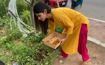 Mouni Roy Is 'Exasperated But Happy' As She Plucks Fresh Tomatoes And Mint From Her Kitchen Garden During Lockdown