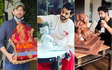 Ganesh Chaturthi 2020: Neil Nitin Mukesh, Karan Wahi, Rithvik Dhanjani Welcome Ganpati Bappa Home With Utmost Love